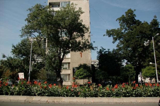 Bulgaria: Lazur, il quartiere popolare diBurgas.